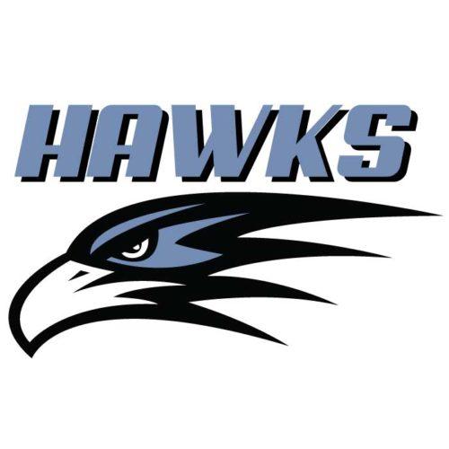 Hawks Team Emblem