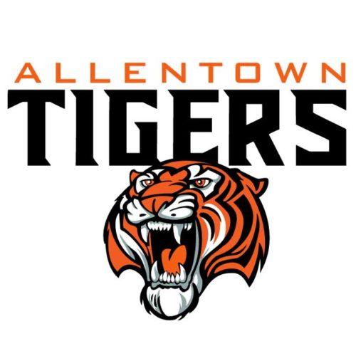 Tigers Team Emblem Mascot
