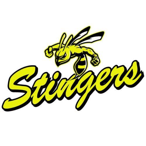 Stingers Team Emblem
