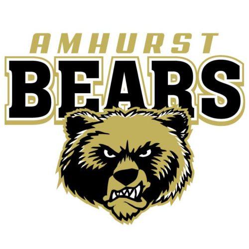 Bears Team Emblem