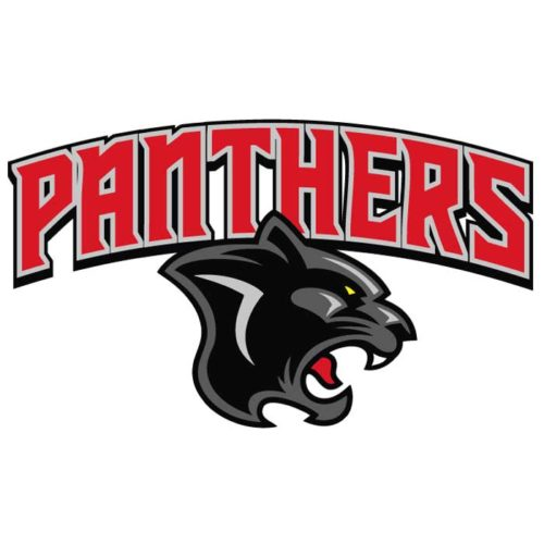 Panthers Team Emblem, Logo